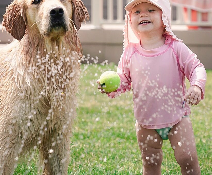 Dog and Baby Catch